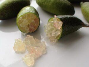 Finger limes cut open to reveal inside