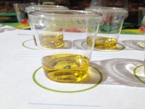 Small plastic cup with olive oil for tasting
