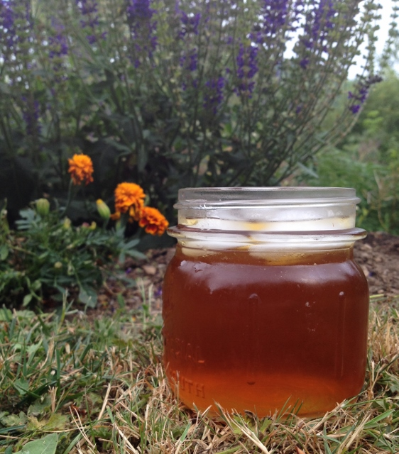 Jar of iced coffee tea in the garden