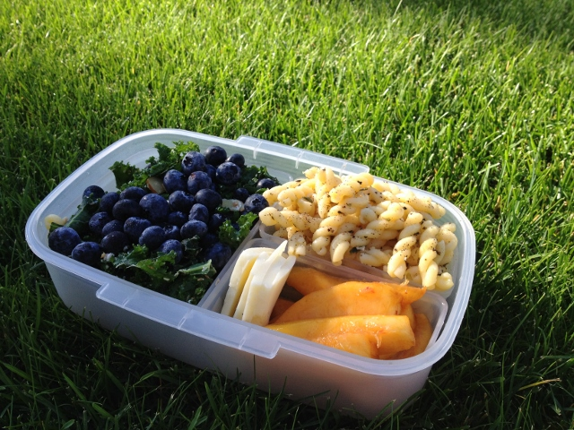 Kale and Blueberry Salad Bento