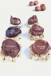 Nutella copycats