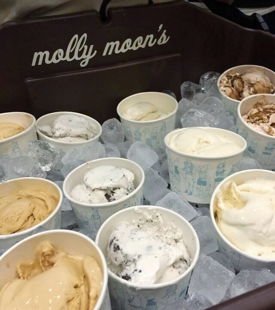 Molly Moon's Vegan Ice Cream
