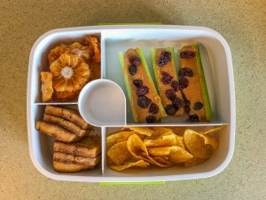 Plastic bento box filled with tofu and celery