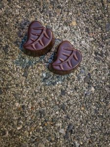 Two pieces of chocolate shaped like leaves