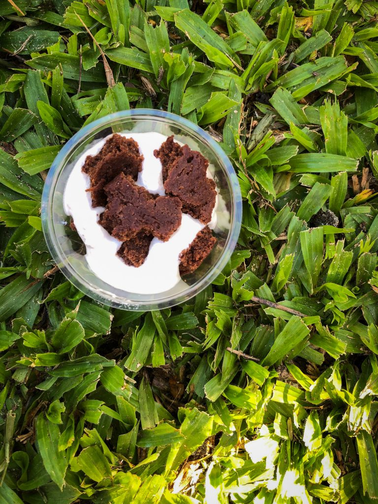 Small plastic cup filled with cream and chocolate cookie pieces sitting on green grass