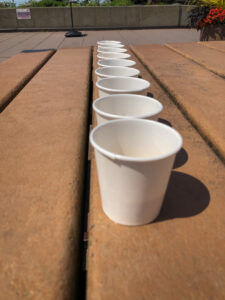Line of paper cups on a picnic table