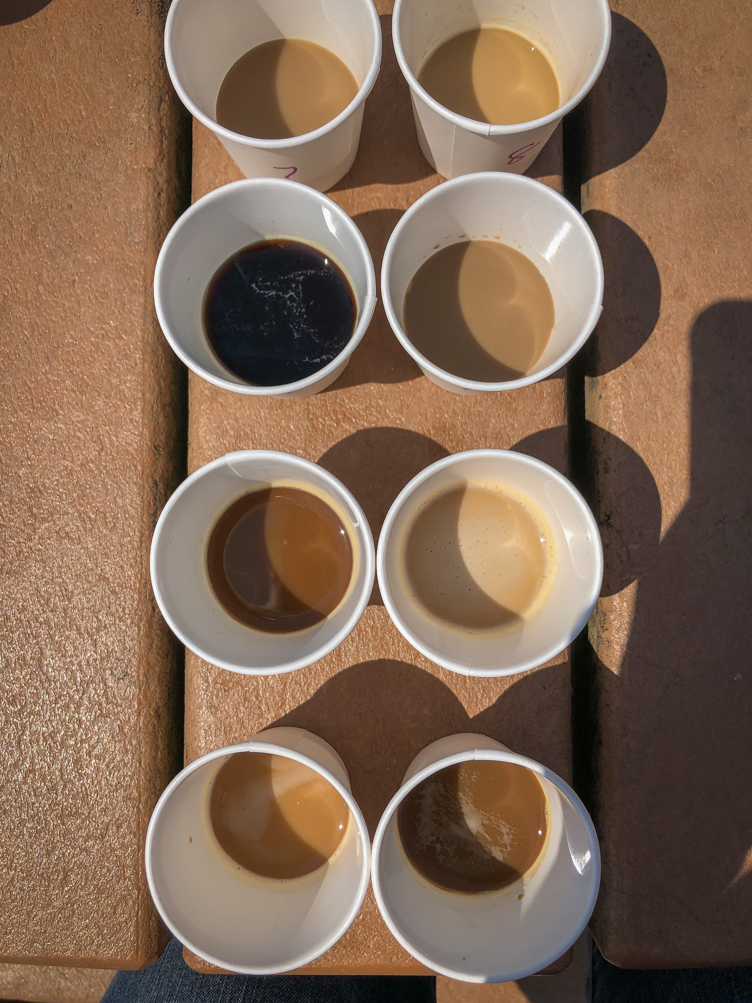 Top down shot of paper cups filled with coffee
