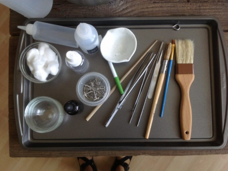 Tray of kitchen tools